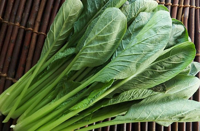 小松菜 保存方法